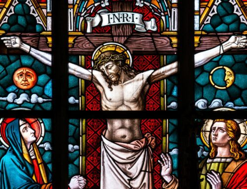 40 days Praying for the Consecration of the Human Race to the Sacred Heart of Jesus